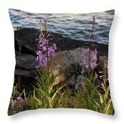 Fire Weed Looking At Lake Superior Throw Pillow