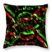 Fire Within Throw Pillow