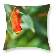 Firecracker Blossom Throw Pillow