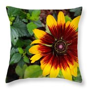 Firecracker Sunflower Throw Pillow