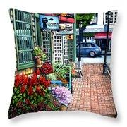 Firefly Lane Bar Harbor Maine Throw Pillow