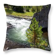 Firehole Fin Throw Pillow