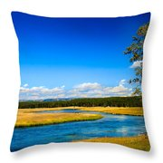 Firehole River Throw Pillow