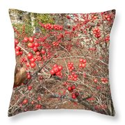 Firethorn Bushes Throw Pillow
