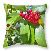 Firethorn Tree Throw Pillow