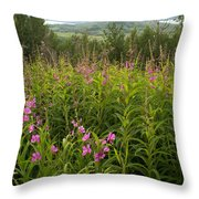Fireweed Throw Pillow