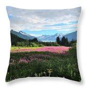 Fireweed At Mendenhall Glacier, Juneau, Ak Throw Pillow