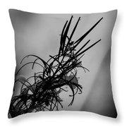 Fireweed Bw Throw Pillow