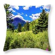 Fireweed, Deer Park Creek, Grand Turk Mountain Throw Pillow