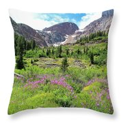 Fireweed Frenzy Throw Pillow