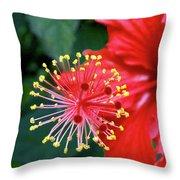 Fireworks - Hibiscus Throw Pillow