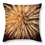 Fireworks In The Park 5 Throw Pillow