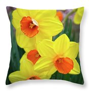 First Arrivals Of Spring Throw Pillow