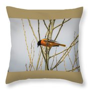 First Baltimore Oriole Of The Year  Throw Pillow