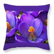 First Crocus Throw Pillow