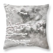 First Day Of Spring 2015 New Jersey Throw Pillow