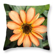 First Flower Grown Aboard Iss Throw Pillow