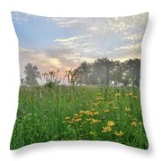 First Light In Glacial Park Throw Pillow