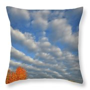 First Light On Glacial Park Sugar Maples Throw Pillow
