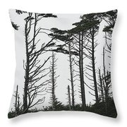 First Line Trees Along The Pacific Ocean Throw Pillow