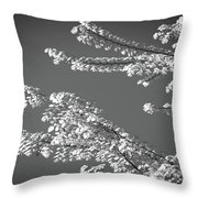 First Signs Of Spring V Throw Pillow