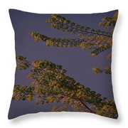 First Signs Of Spring Vi Throw Pillow