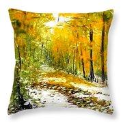 First Snow Throw Pillow by Boris Garibyan
