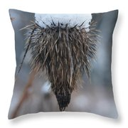 First Snow On The Thistle Throw Pillow