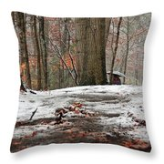 First Snowfall - A Walk In The Woods Throw Pillow
