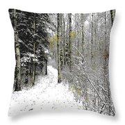 First Snowfall Throw Pillow