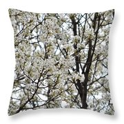 First Spring Blossom Throw Pillow