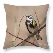 First Warbler Back Yellow Rumped Warbler Throw Pillow