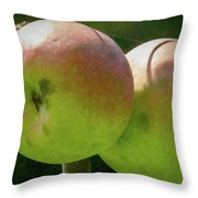 First Year Of Apples 0922pa Throw Pillow