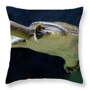 Fish 36 Throw Pillow