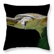 Fish 37 Throw Pillow
