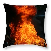 Fish Creek Fish Boil Wi Throw Pillow