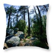 Fish Eye Trees Throw Pillow