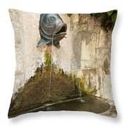 Fish Fountain Throw Pillow