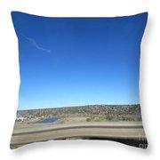 Fish Hatchery Throw Pillow