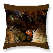 Fish In Sea Anemones Aquarium Throw Pillow
