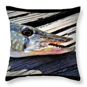 Fish Mouth Throw Pillow