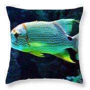 Fish No.3 Throw Pillow