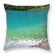 Fish Of Kaluderovac Lake Throw Pillow
