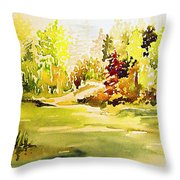 Fish Pond At Nutimik Lake Manitoba Throw Pillow