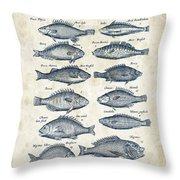 Fish Species Historiae Naturalis 08 - 1657 - 14 Throw Pillow