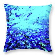 Fish Traffic Throw Pillow