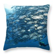 Fish Watch Throw Pillow