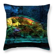 Fish Wheels Throw Pillow