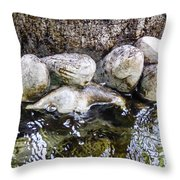 Fish Wives Fountain Detail Throw Pillow