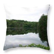 Fisherville Brook 1 Throw Pillow
